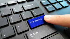 shutterstock 1510092077 300x169 - Hand,Hold,Blue,Wordpress,Keyboard,Button